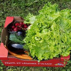 Petit panier de la semaine , cerise aubergine courgette carotte salade Nos Saveurs de France