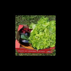 Le grand panier de fruits et légumes d'Alsace. livraison à domicile. Nos Saveurs de France