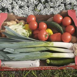 Le Panier de Légumes de la semaine. Nos Saveurs de France
