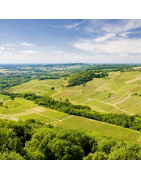 Produits du terroir et gastronomie de Bourgogne / Franche Comté